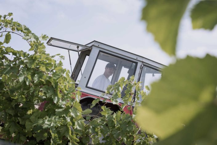 Christoph Bieglmayer im Traktor im Weingarten